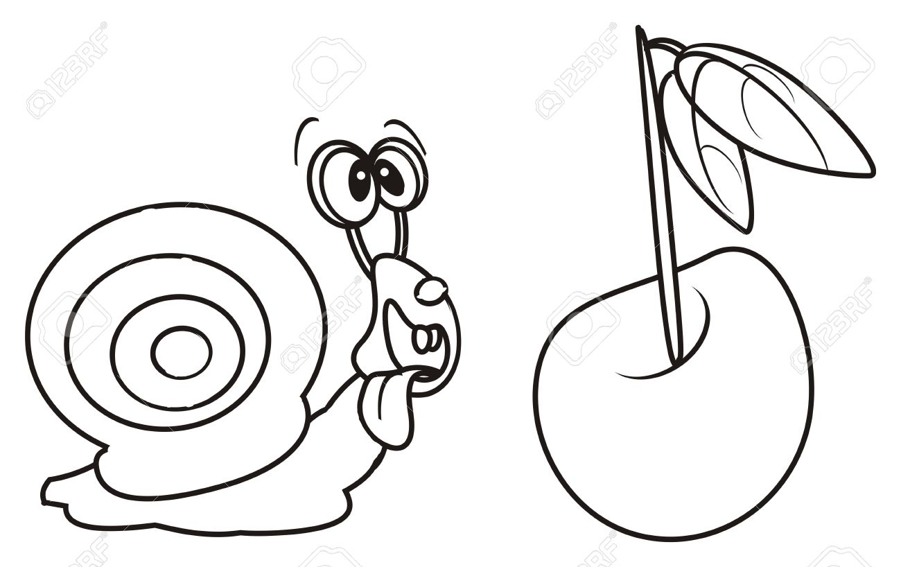 Coloring Snail Found Cherry Berry Stock Photo, Picture And Royalty ...