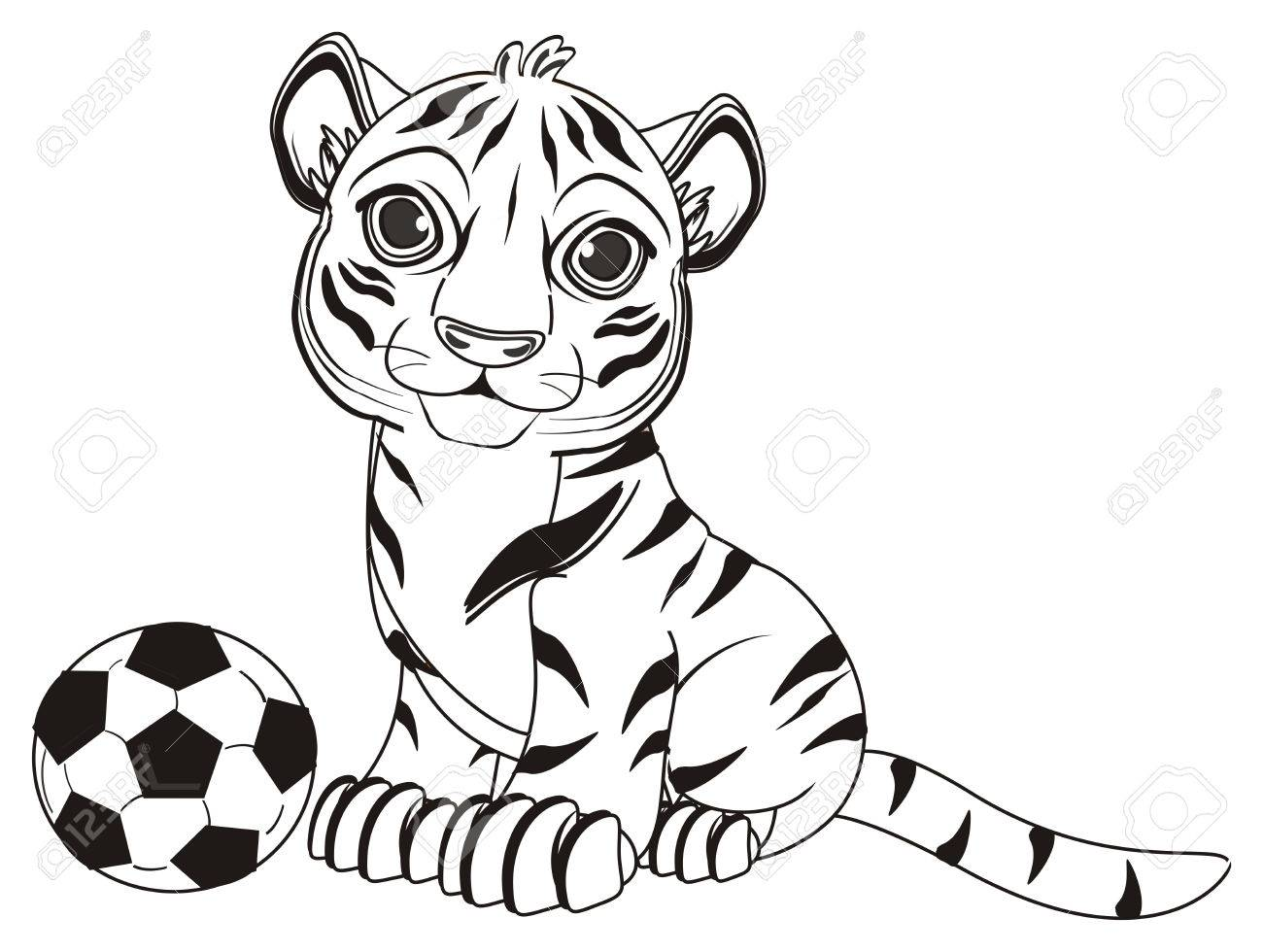 Färbung Tiger Sitzen Mit Einem Fußball Lizenzfreie Fotos, Bilder Und ...