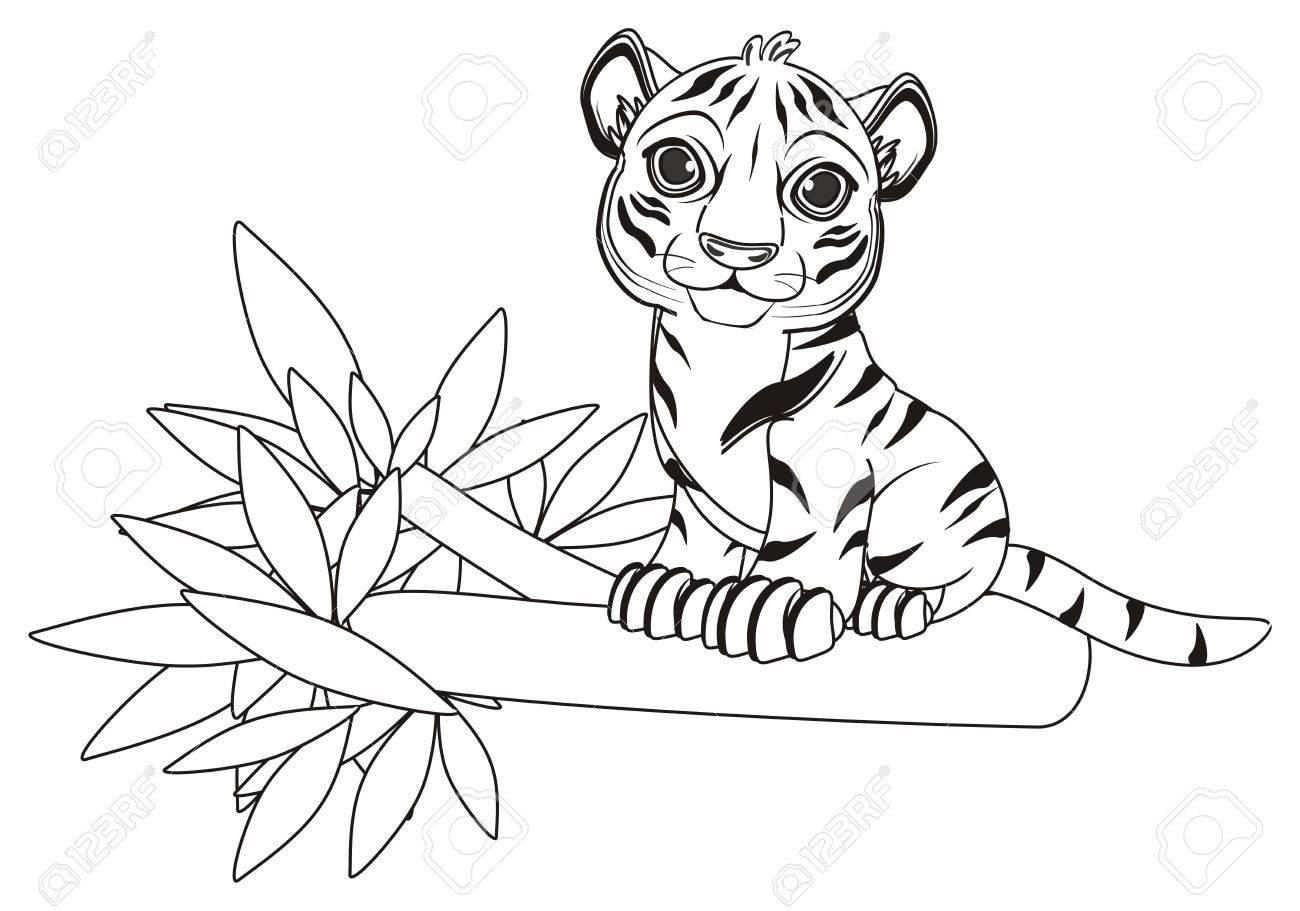 Colorear Tigre Sentarse Arriba En La Rama Del árbol