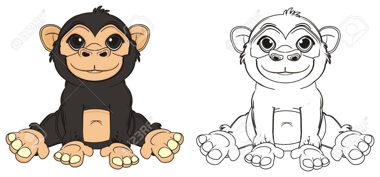 Farbiger Affe Sitzen Mit Färbendem Affen Lizenzfreie Fotos, Bilder ...