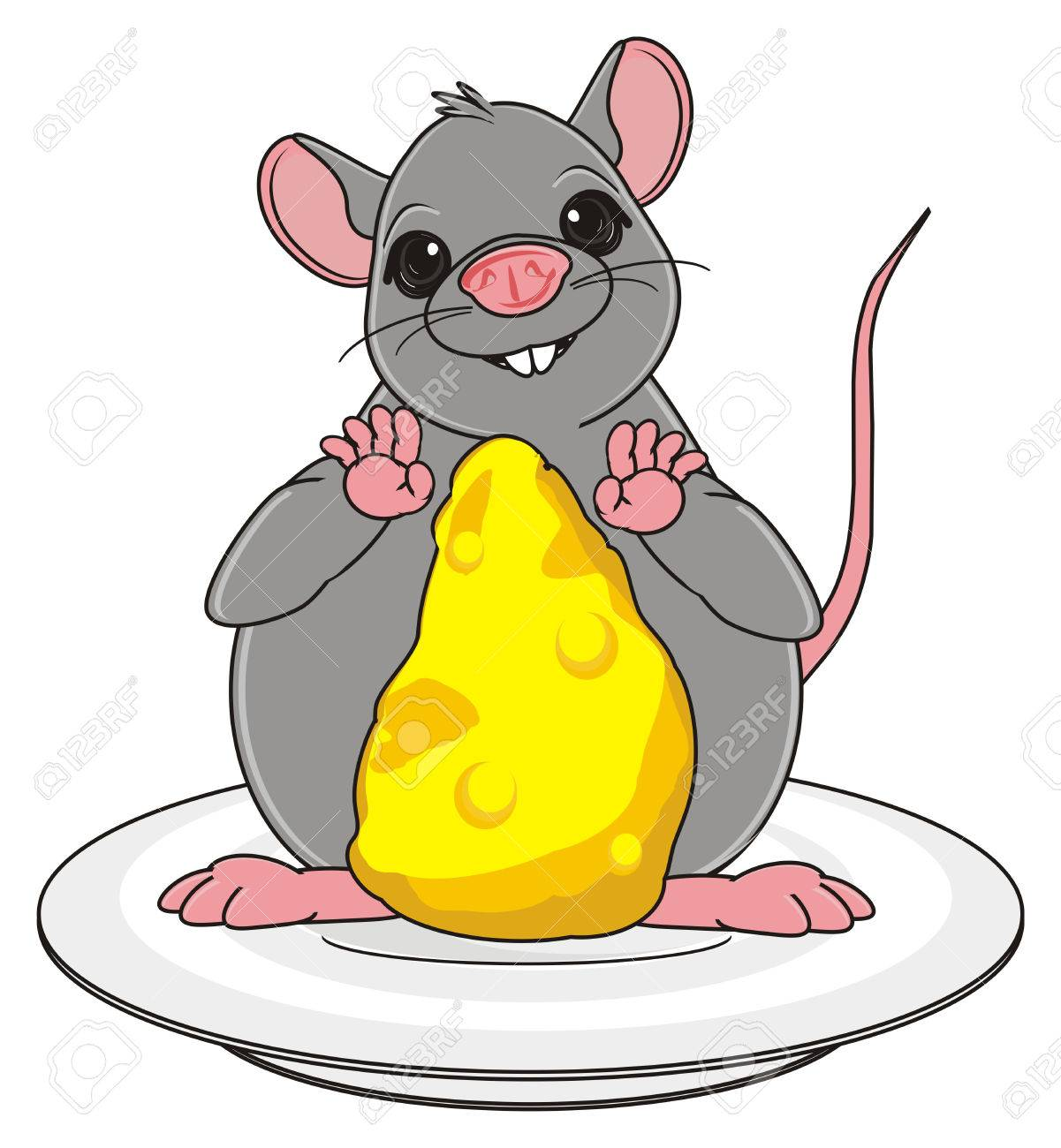 fat rat with cheese stand on the plate stock photo picture and