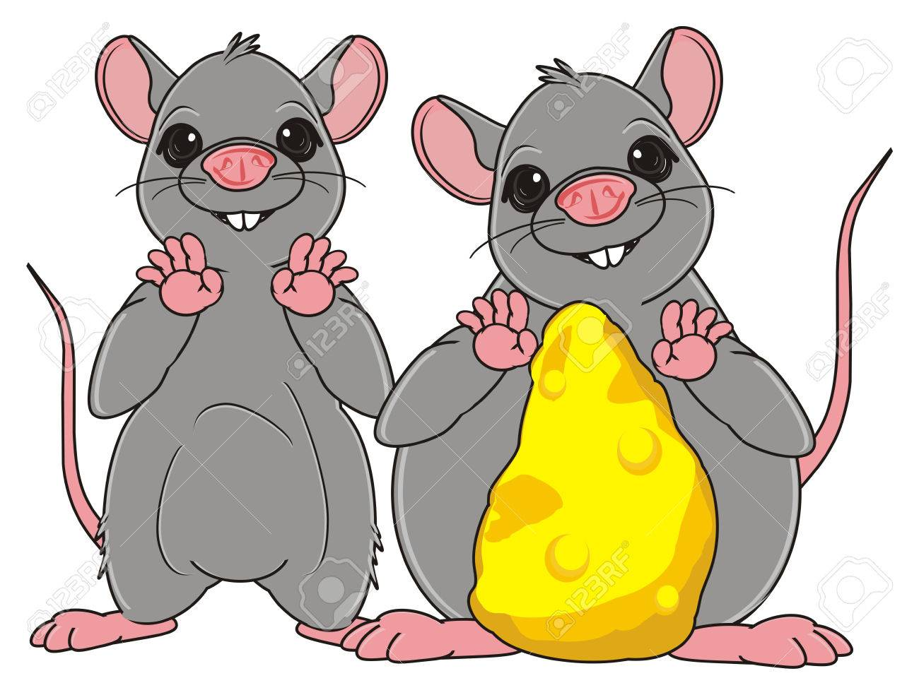 skinny rat stand with fat rat with a cheese stock photo picture and
