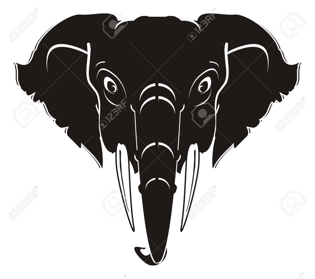 Tête Déléphant Noir Et Blanc