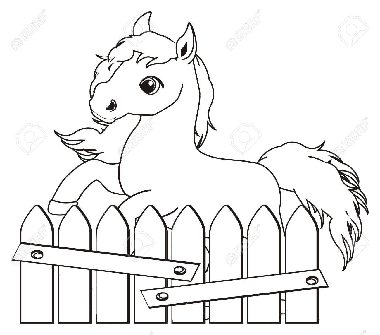 Coloring Horse Peek Up From Fence Stock Photo, Picture And Royalty ...