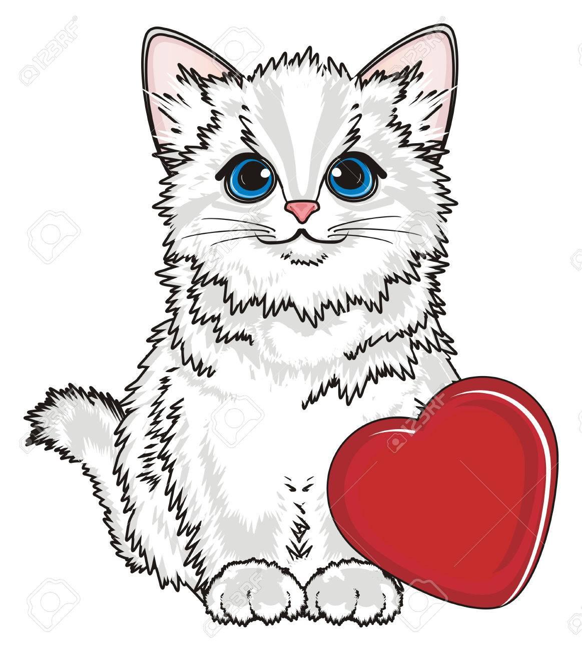 El Gato Blanco Se Sienta Con El Corazón Rojo Grande Fotos, Retratos ...