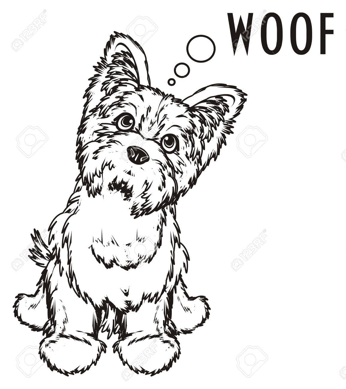 Coloring Yorkshire Terrier And Word Woof Stock Photo, Picture And ...