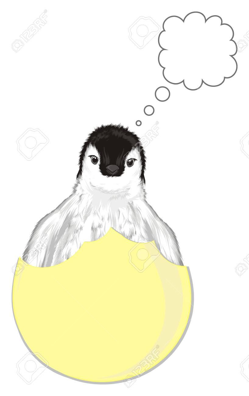 卵 から 生まれる 動物