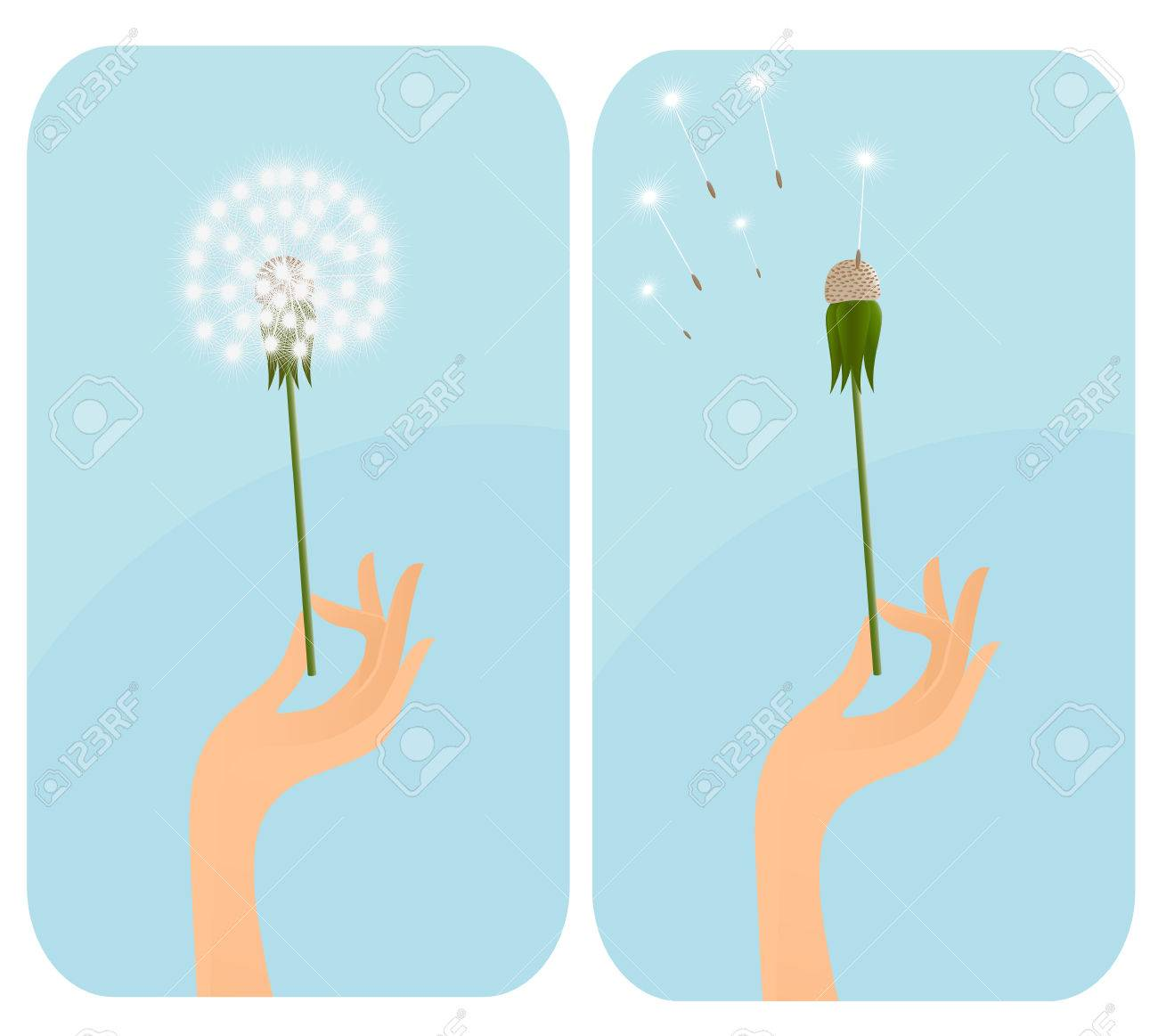 Female hand with dandelion. Vector-Illustration Stock Vector - 2957367