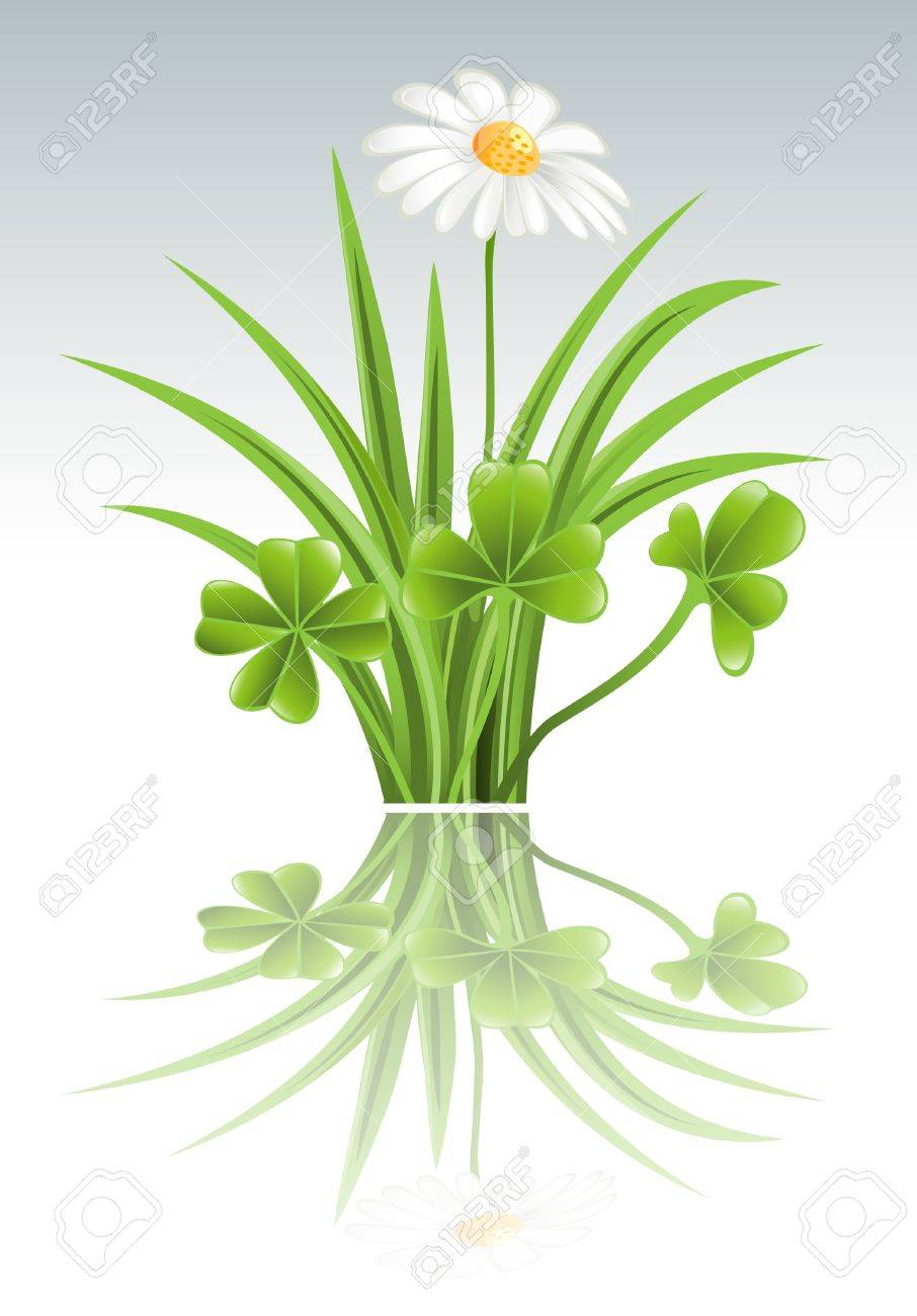 Green grass with clover and camomile flowers Stock Vector - 12992028