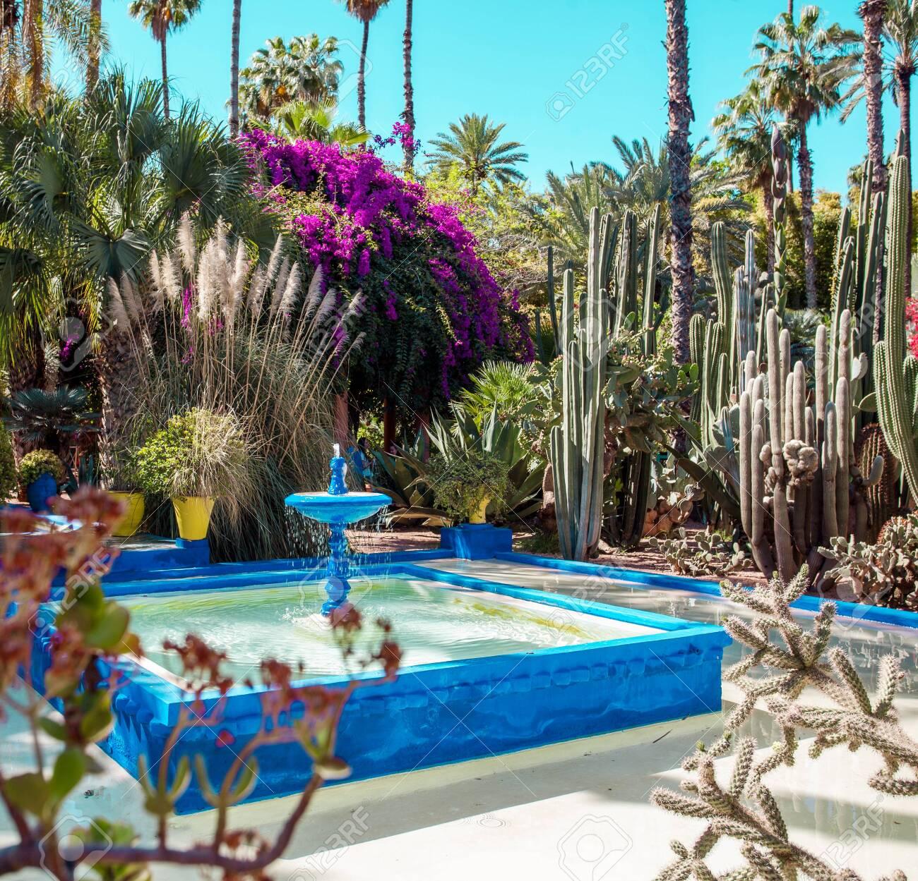 Majorelle Garden is a botanical ,tropical garden and artists landscape garden in Marrakech, Morocco. Majorelle Blue - 128119737