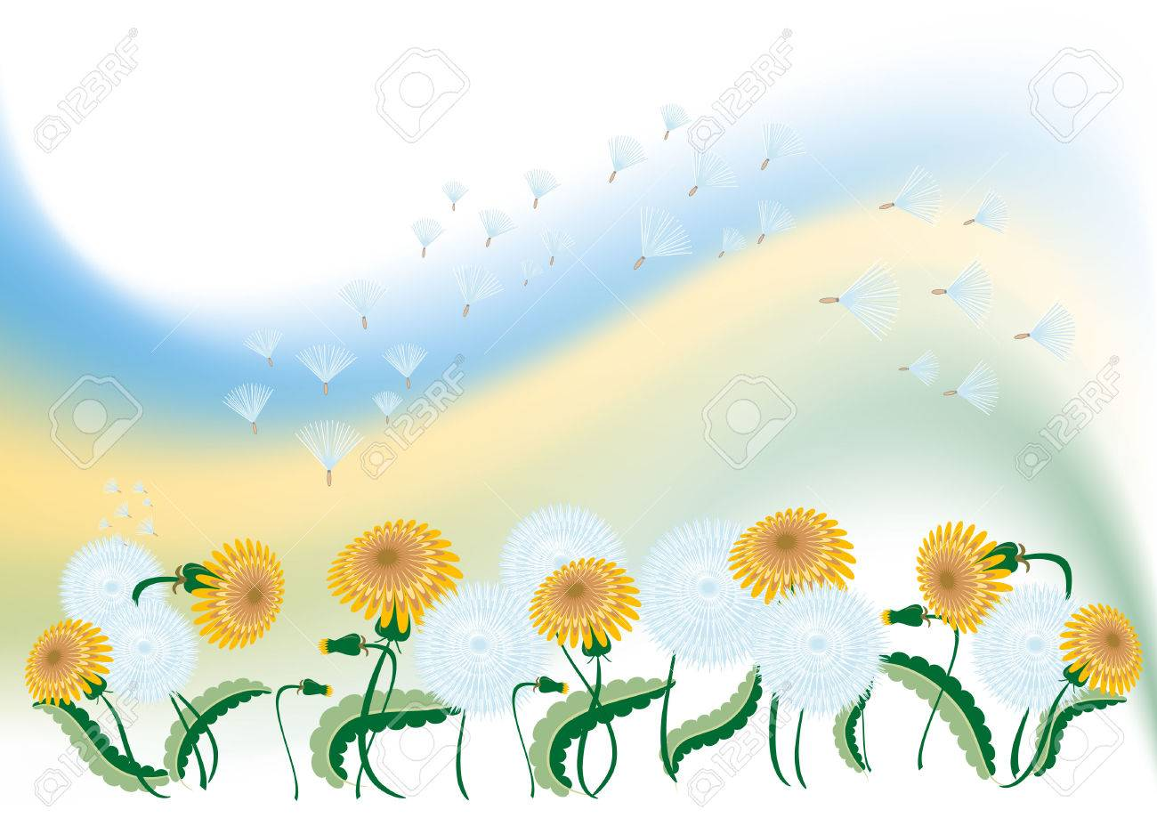 Delicate background with dandelion.Background. Banner. Wallpaper. Stock Vector - 6903761