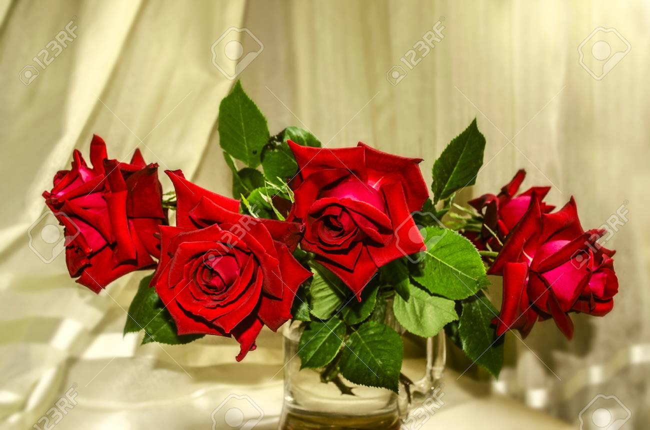 foto de archivo ramo de rosas rojas grandes en una taza de vidrio grande sobre un fondo de pliegues de cortinas de luz - Fotos De Rosas Rojas Grandes