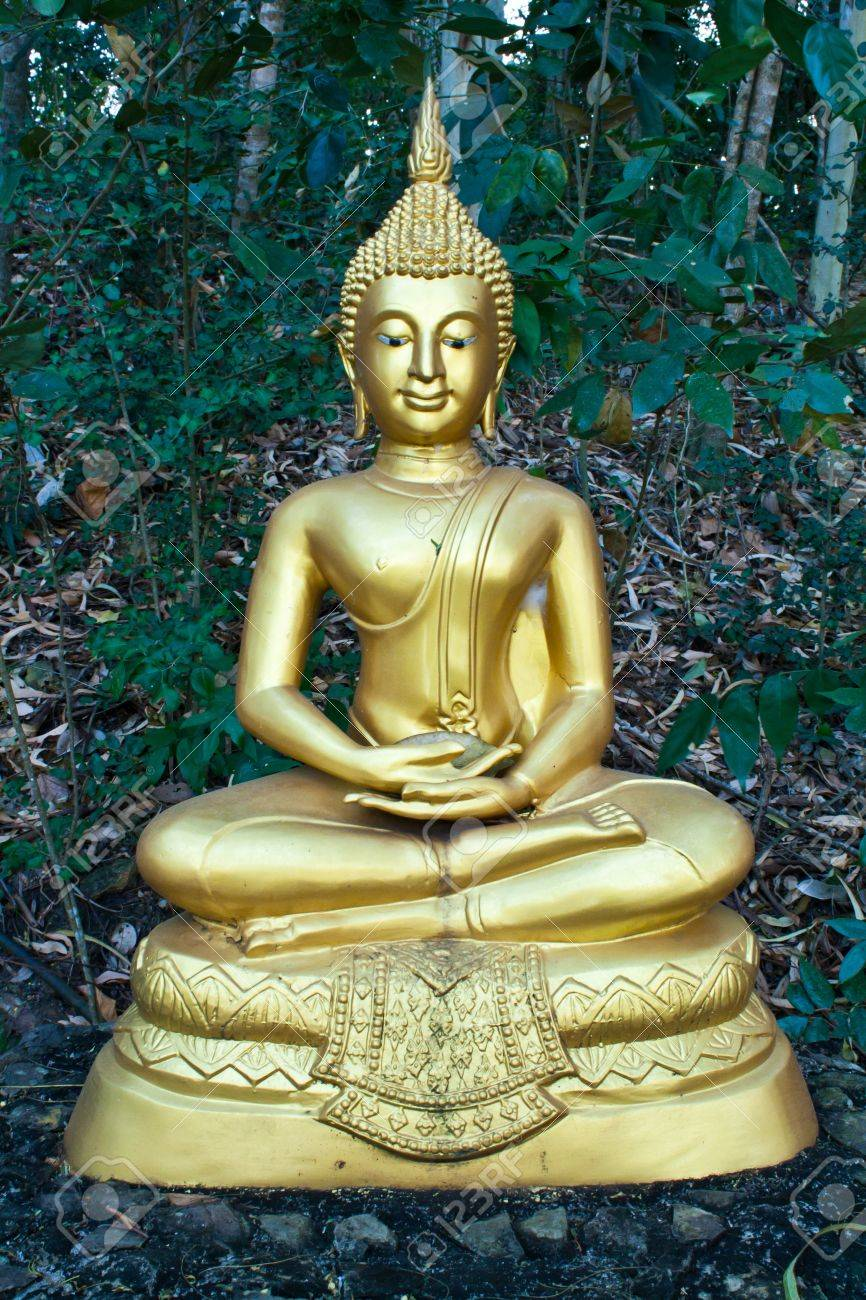 Buddha image in the attitude of meditation Stock Photo - 11841517