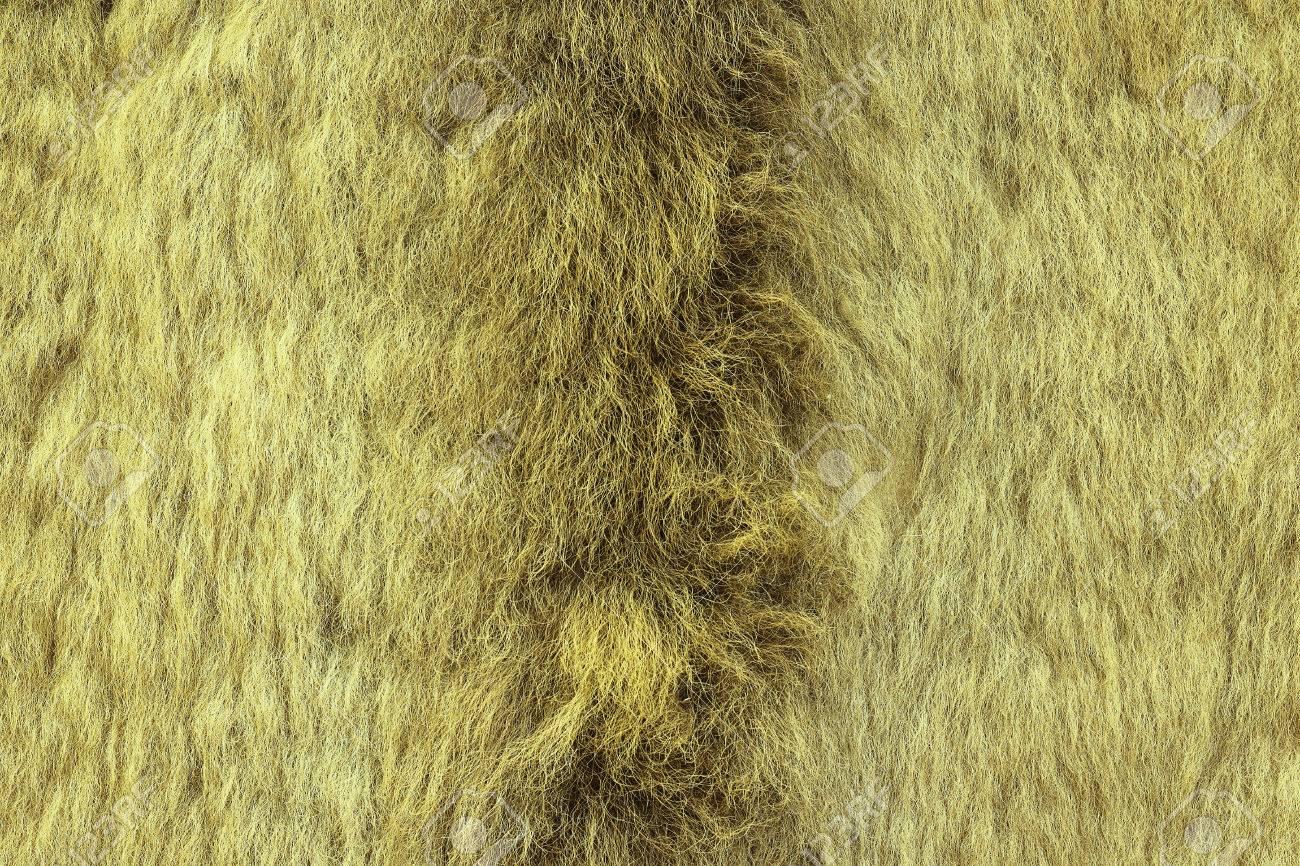 European Lynx Textured Fur, Real Pelt From Hunted Animal Stock ... for Lynx Pelt  45jwn