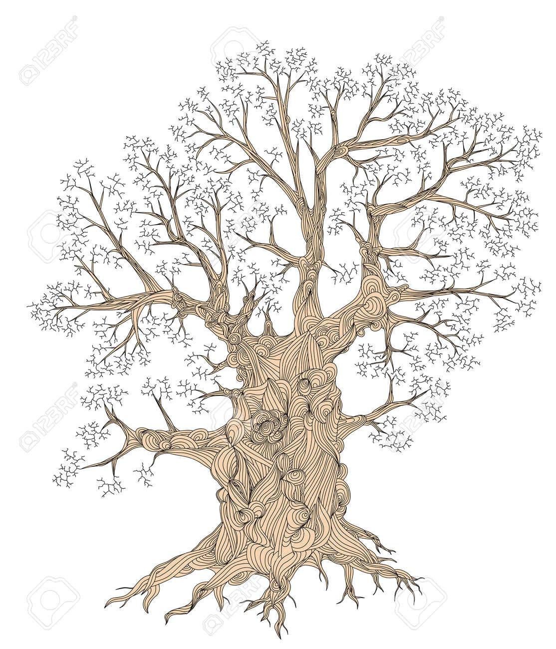 oak tree outline 100 images oak tree icon forest wood sign