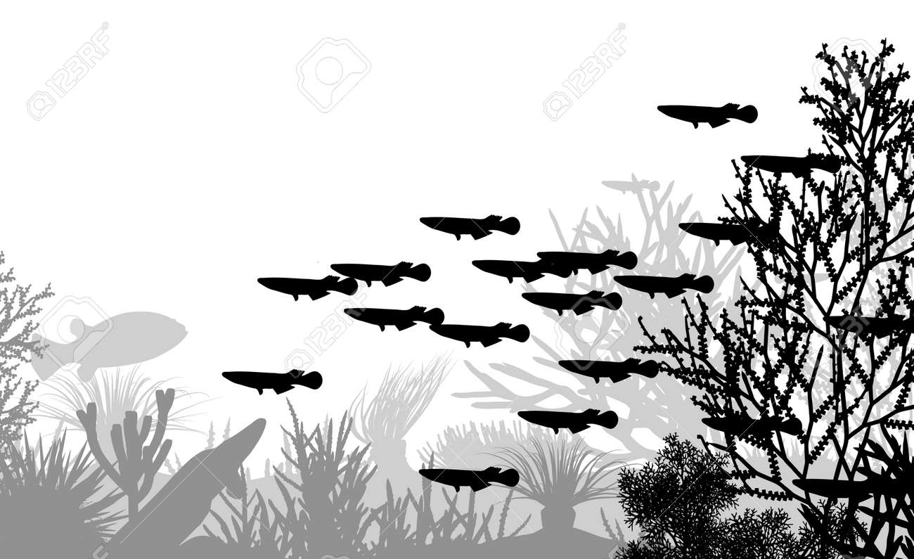 illustration of coral and fish silhouettes Stock Vector - 6196920