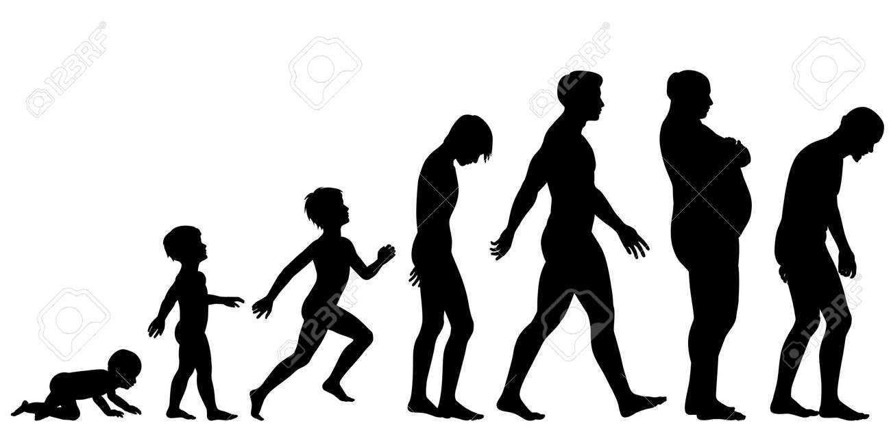Editable silhouette sequence of the life stages of a man - 19477291