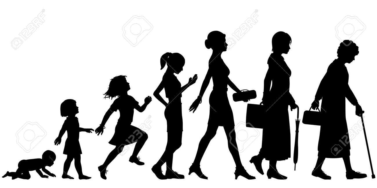 Editable vector silhouettes of different stages of a woman Stock Vector - 21783809