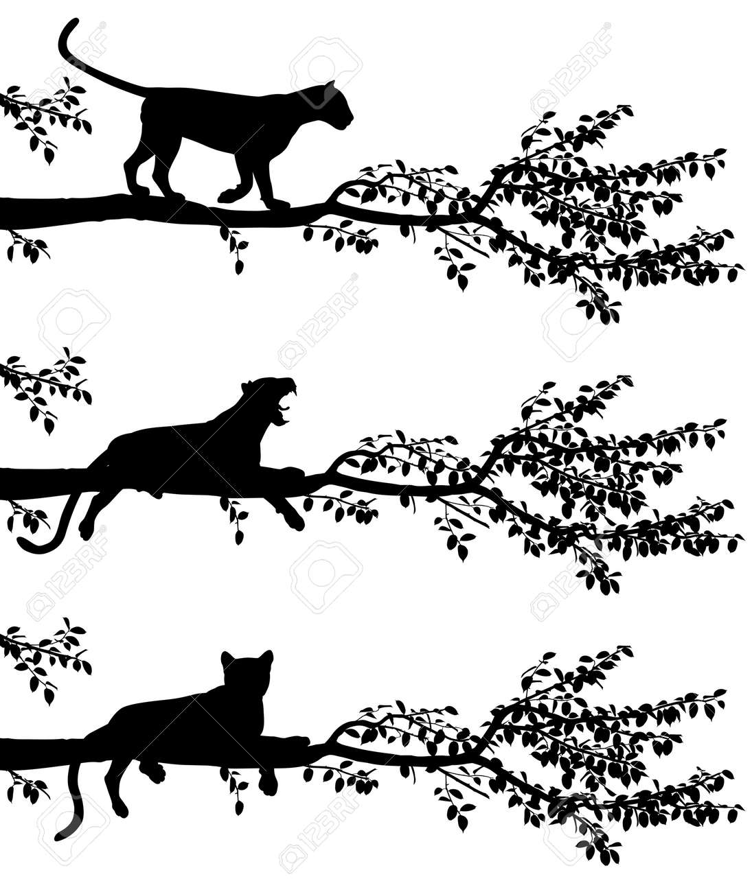 Set Of Three Editable Vector Silhouettes A Leopard On Tree Branch With Leopards As