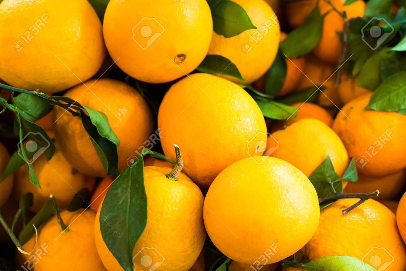 Oranges - 93842915