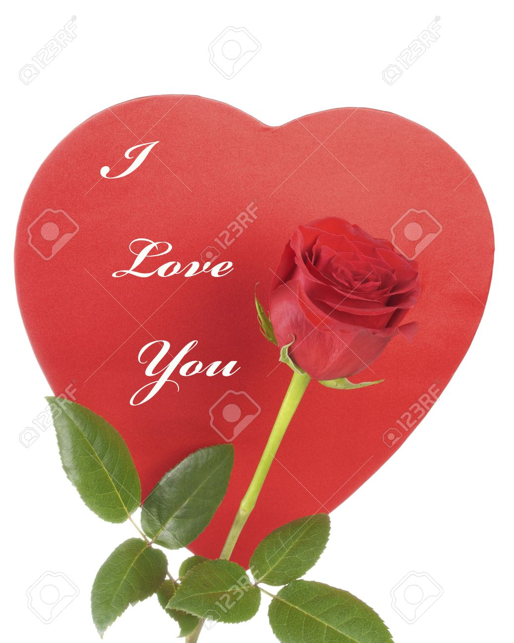 Red Rose And A Red Heart With I Love You Text Stock Photo Picture