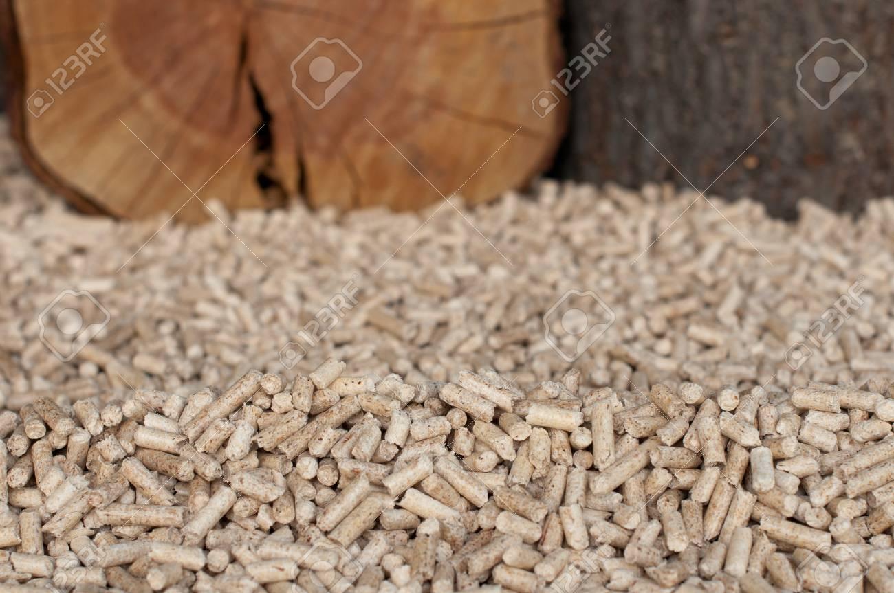 Pine peletts- selective focus on the heap Stock Photo - 13486785