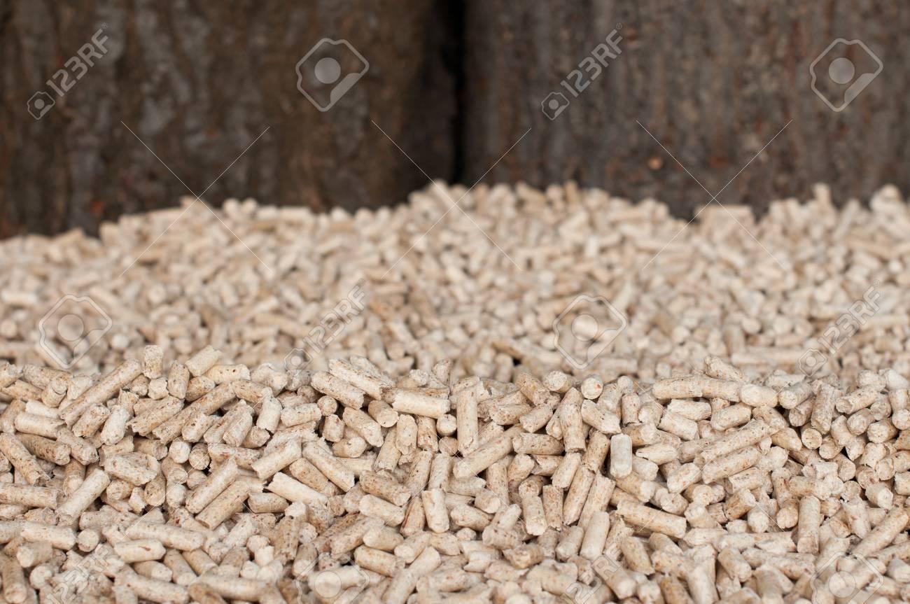 Pine peletts- selective focus on the heap Stock Photo - 13486784