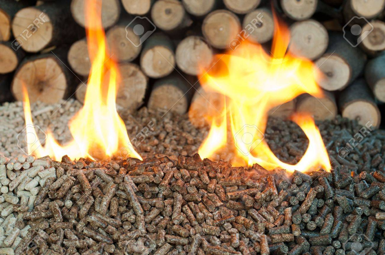 Different kind of pellets- oak, pine,sunflower, in flames. Selective focus on the heap. Stock Photo - 13716841