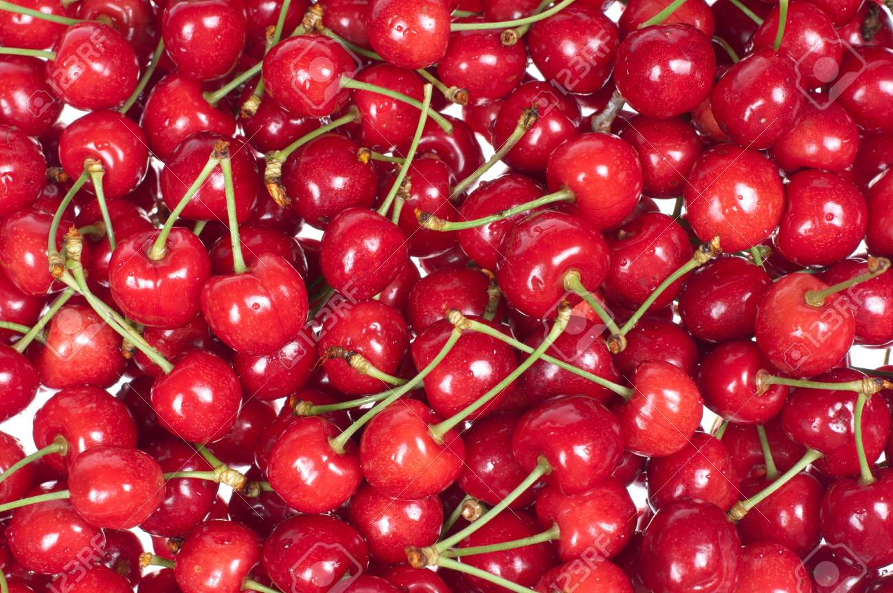 Cherries on a white background Stock Photo - 14125785