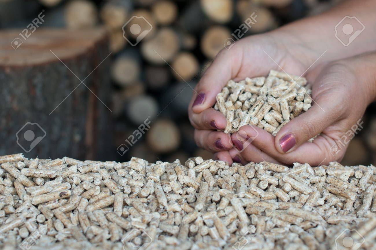 Pellets in female hands -selective focus on the heap Stock Photo - 15551095