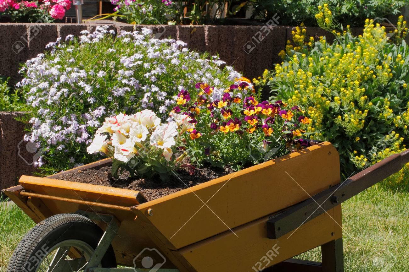 Petite brouette en bois avec des fleurs comme décoration dans un jardin