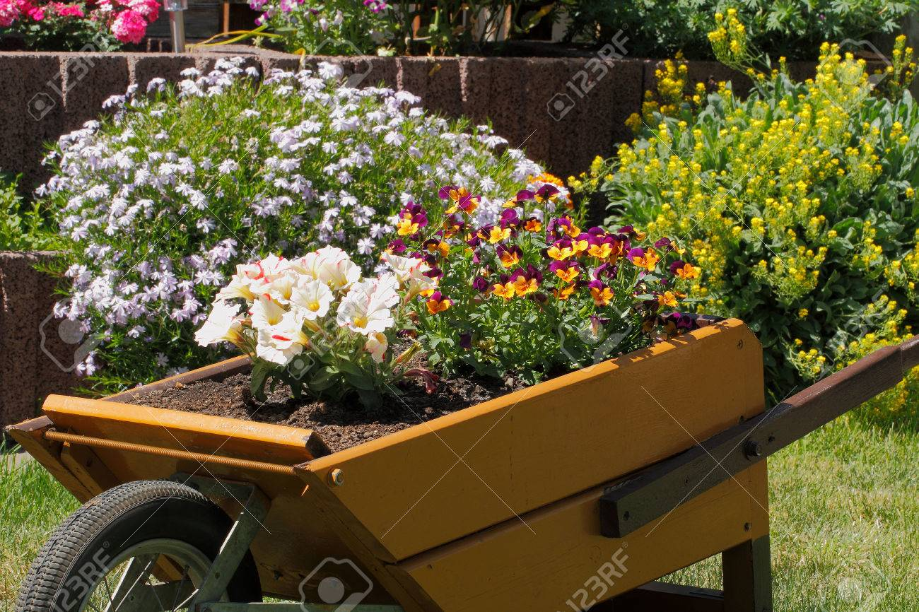 Small Wooden Wheelbarrow With Flowers As Decoration In A Garden ...