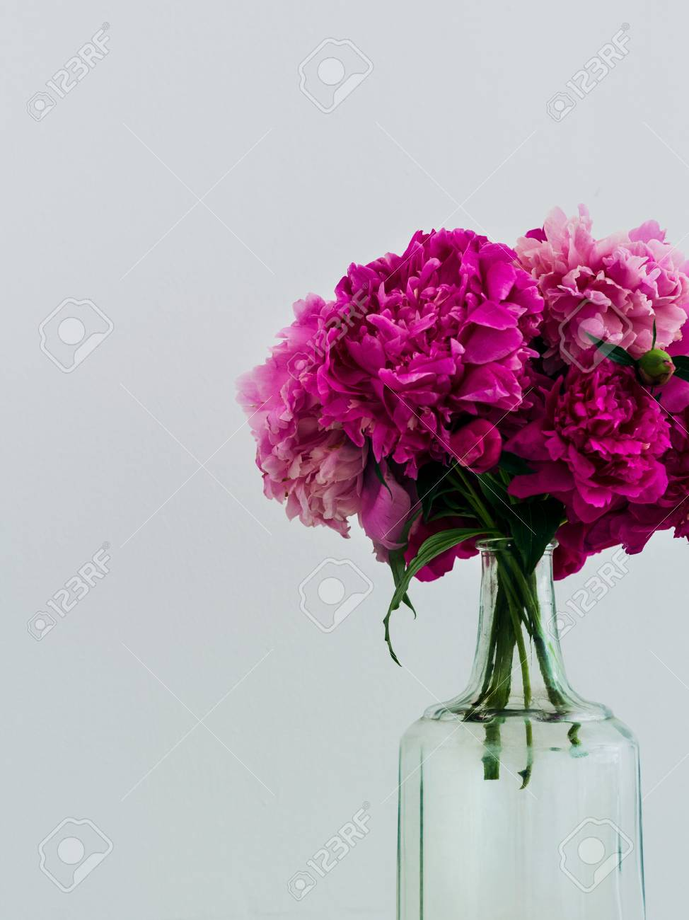 Lilac Peonies In A Glass Bottle Fresh Bouquet Of Purple Peonies ...