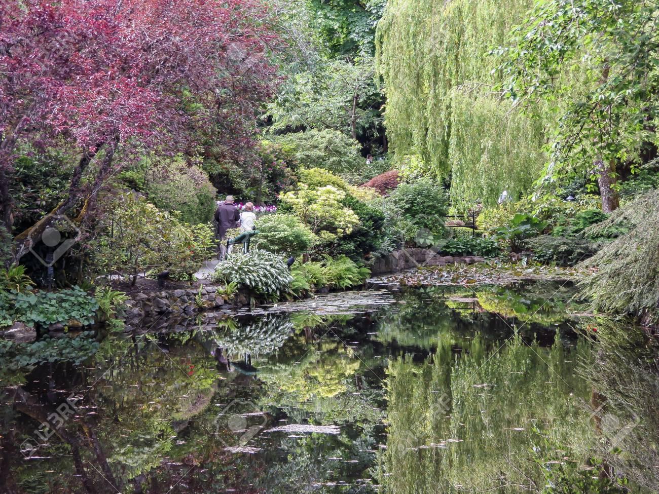 Schöner Garten Standard Bild   49054048