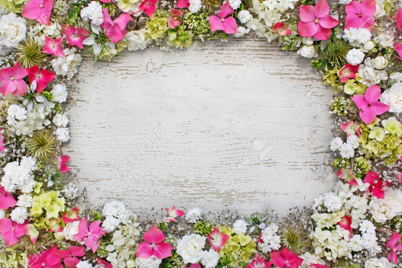 stock photo frame made of fresh flowers