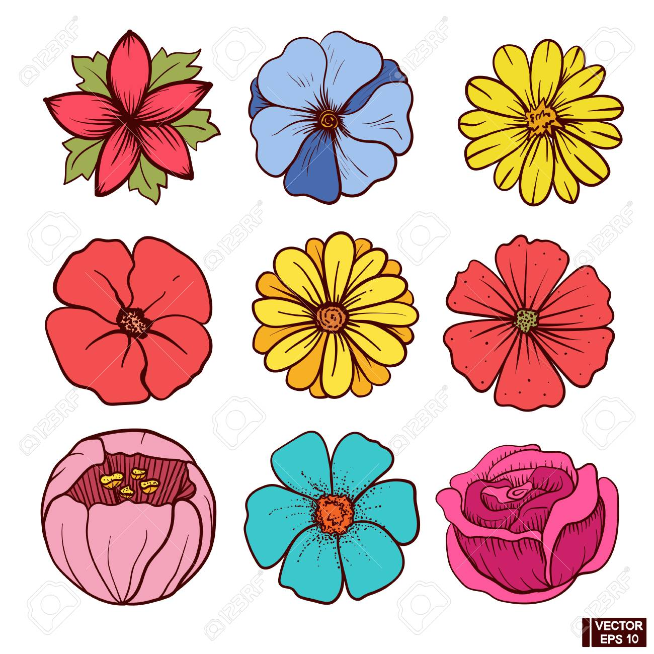 Vector Image A Set Of Beautiful Color Flowers Flowers Hand Royalty Free Cliparts Vectors And Stock Illustration Image 86227103