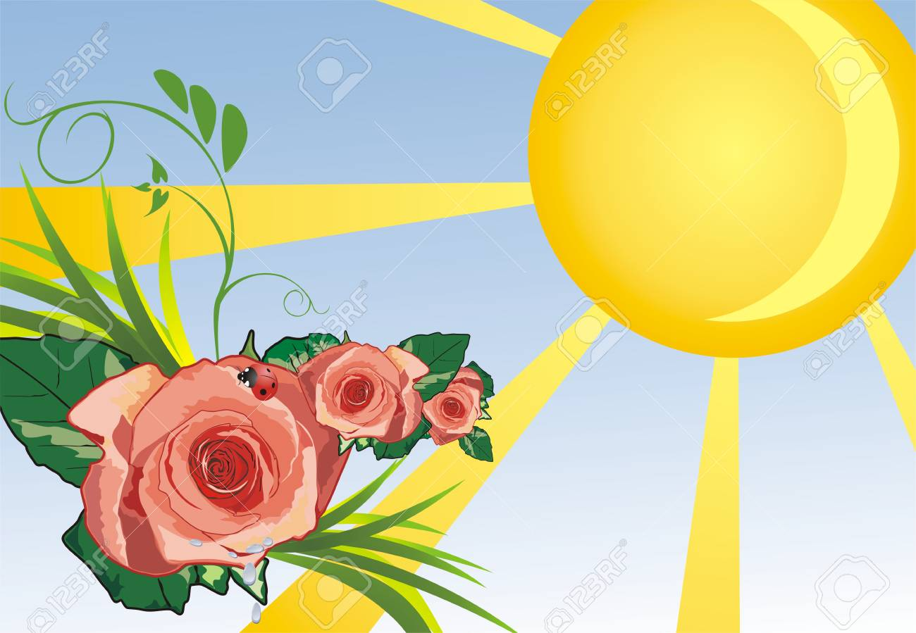 Grass, roses and ladybird. Summer background. Vector Stock Vector - 5131787