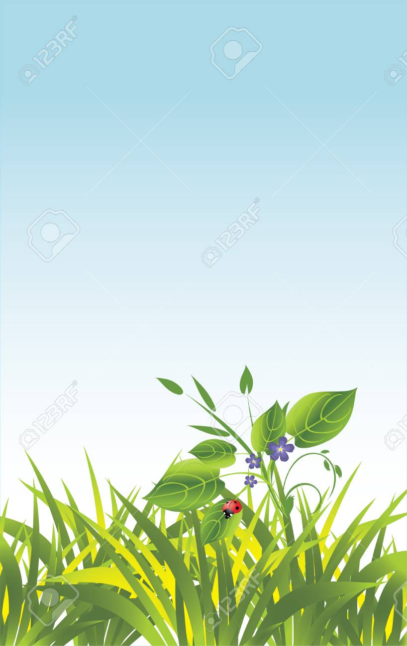 Grass and flowers with ladybird. Vector Stock Vector - 6023470