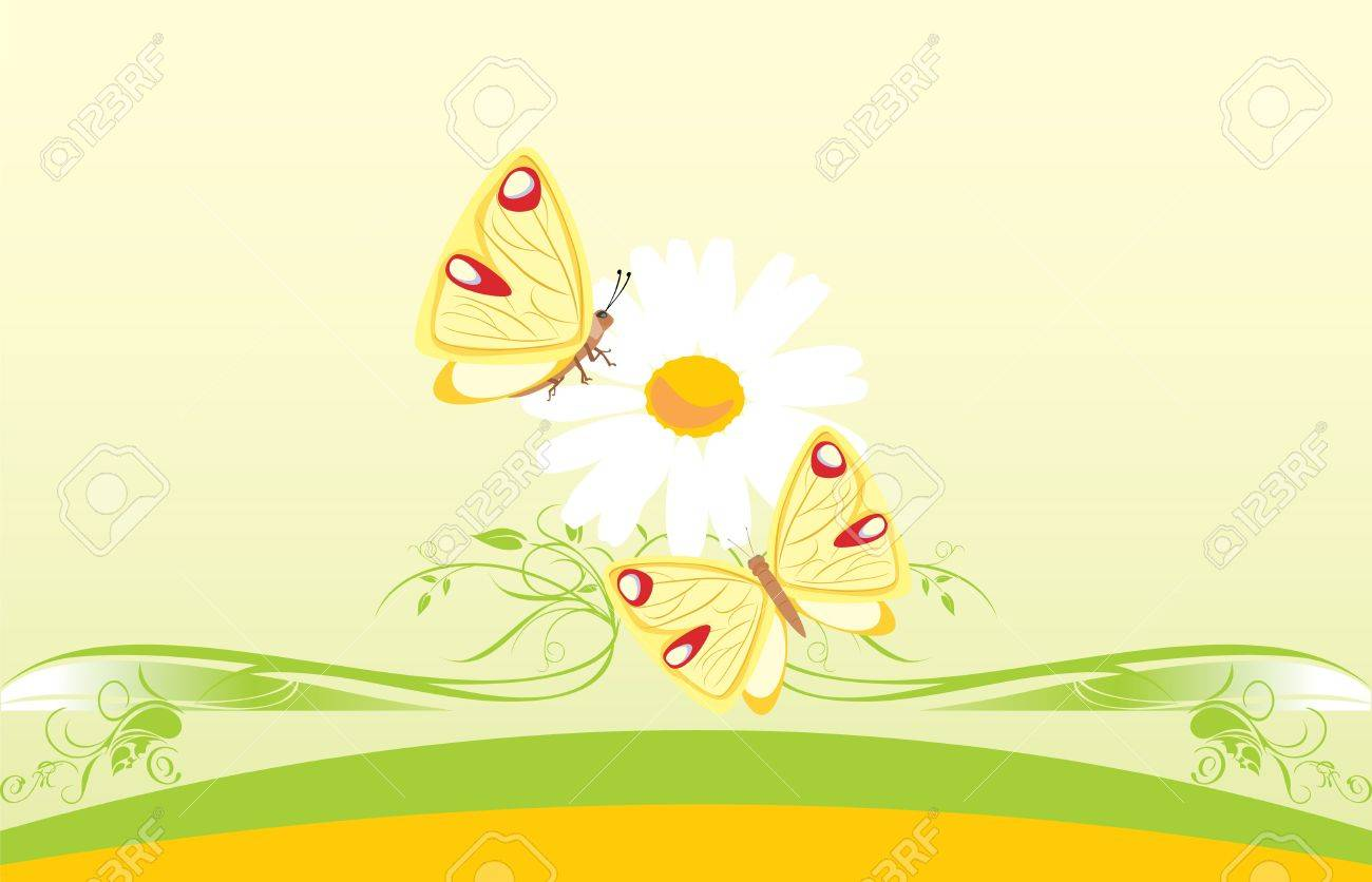 Chamomile and butterflies. Decorative card Stock Vector - 9532821
