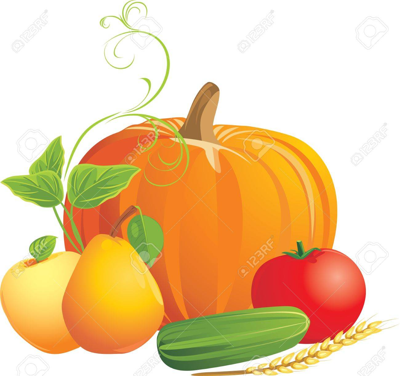 Vegetables and fruits isolated on the white Stock Vector - 10982500