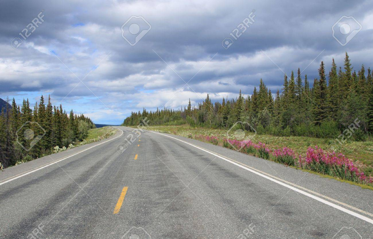 a3755a2d6 scenic Richardson highway in Alaska with trees and flowers at..