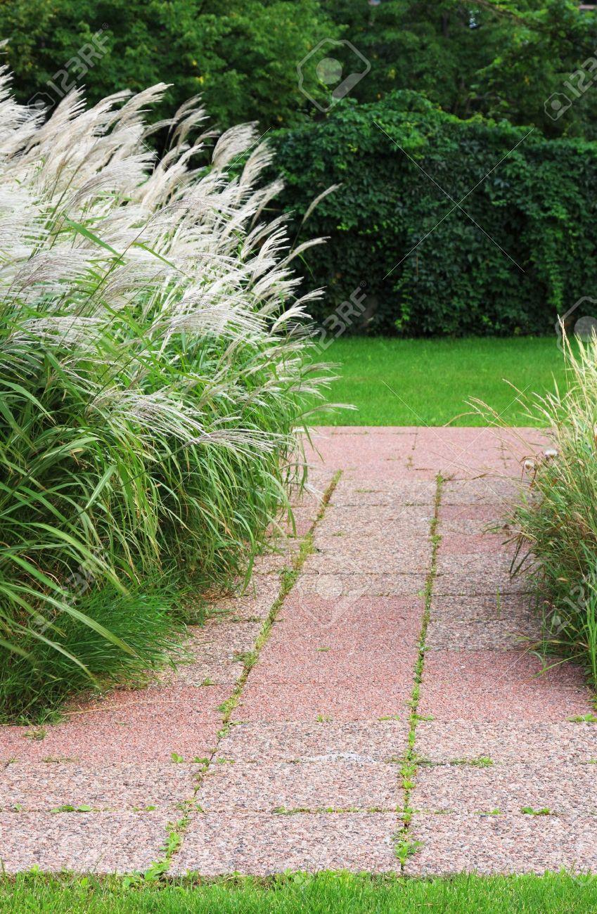 Rot Stein Weg In Einem Einfachen Garten Mit Zier Gräser Weht Im Wind
