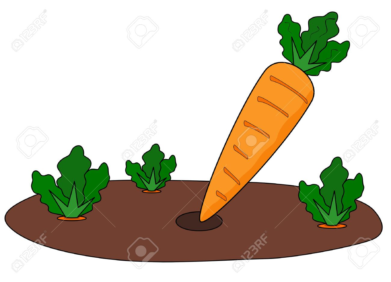 cartoon illustration of fresh picked carrot in vegetable patch Stock Vector - 3923510