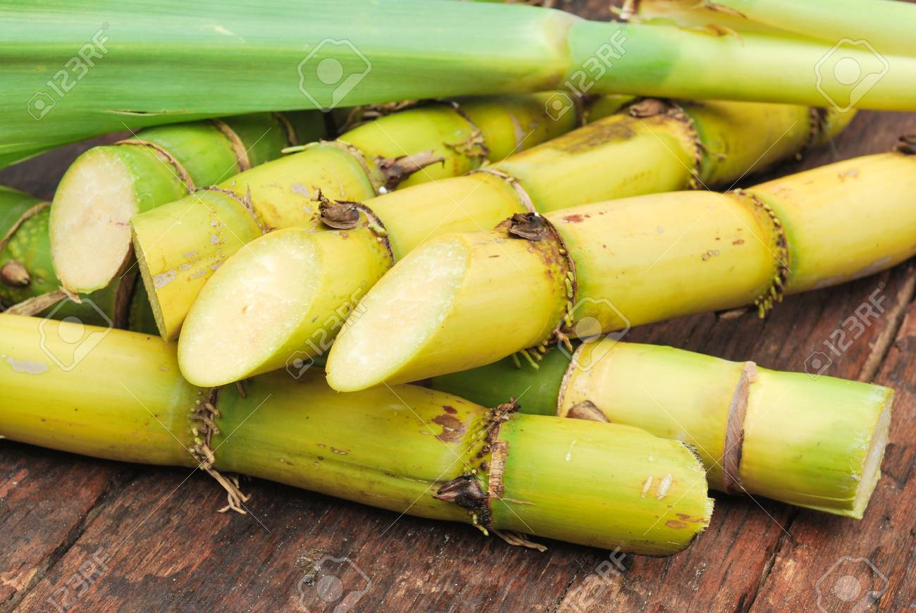 Close up Sugarcane - 30227264
