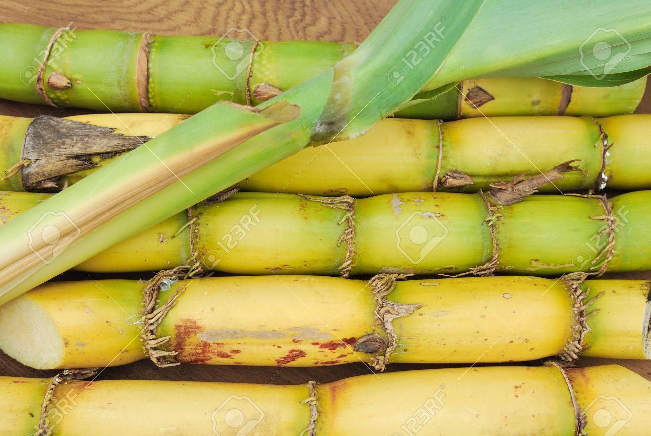 Close up Sugar and sugarcane - 30227503