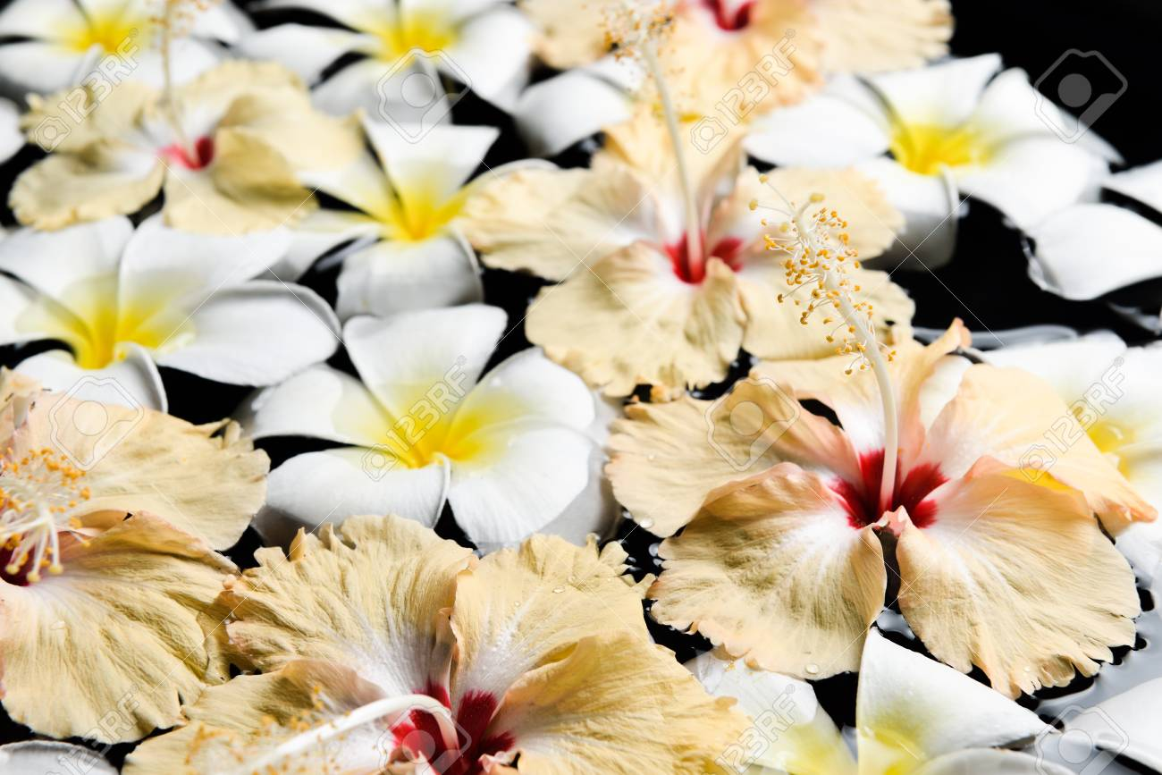 Spa Wellness Aromatherapy Conceptbeautiful Flowers In The