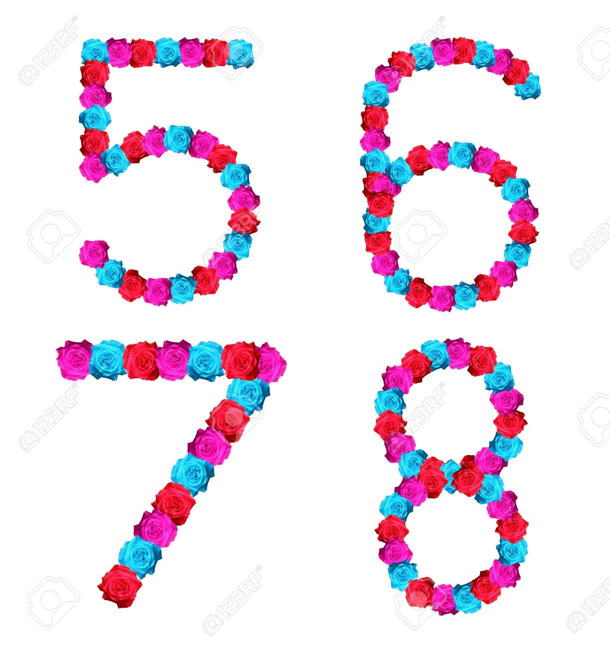 colorful of rose alphabet number - number 5,6,7,8 Stock Photo - 10057155