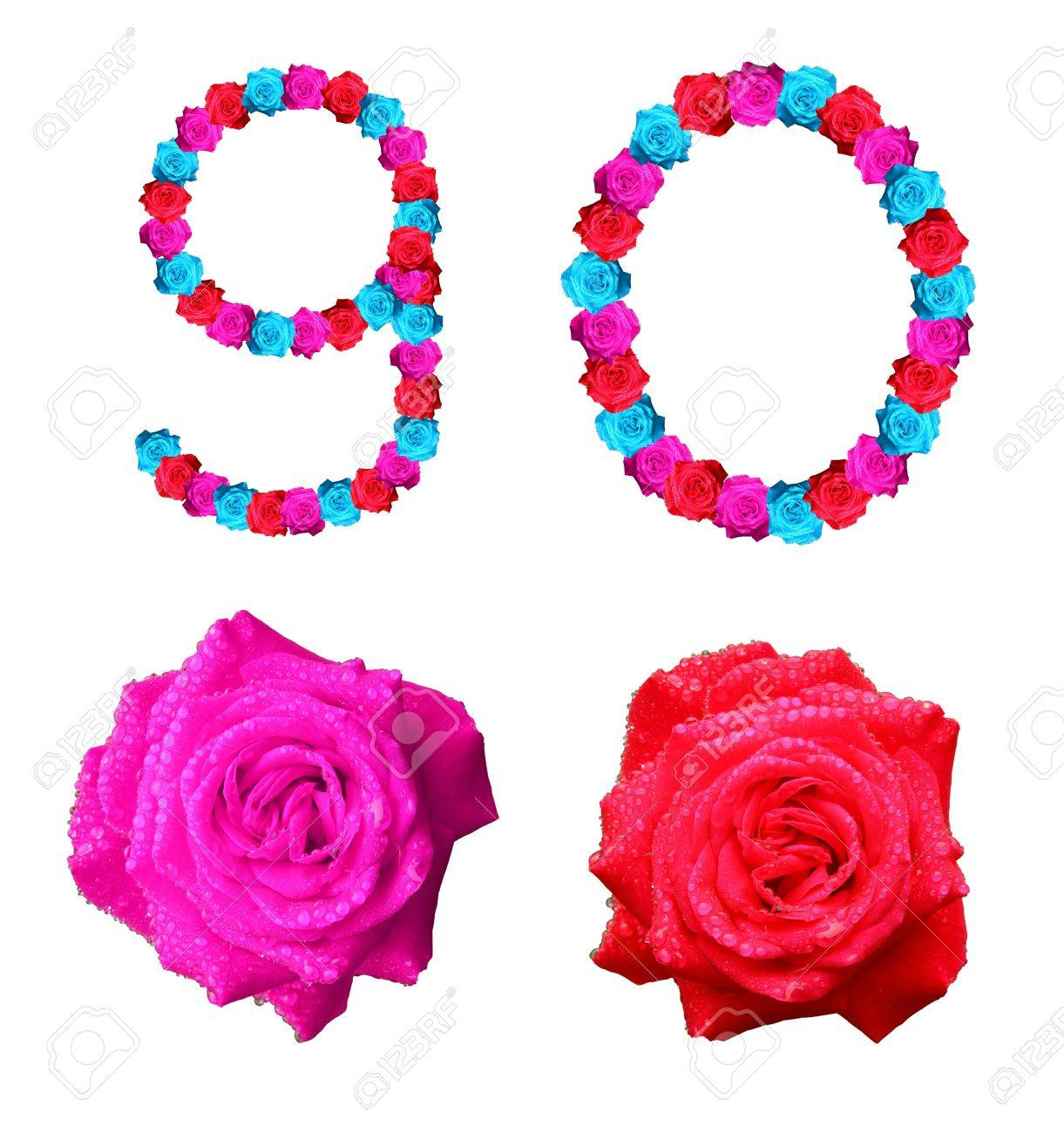 colorful of rose alphabet number - number 9,0 Stock Photo - 10057128