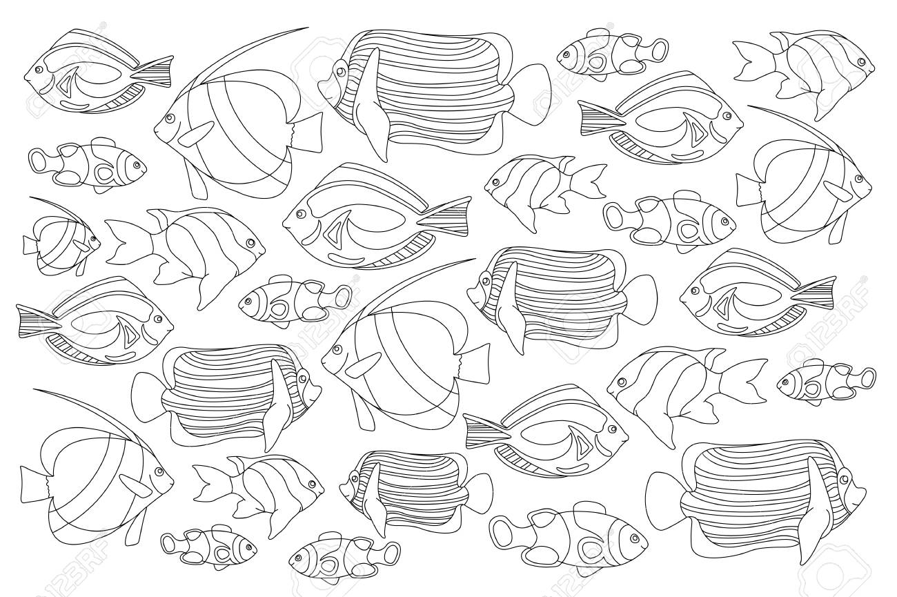 Outlined Coral Fishes Horizontal Coloring Page Tropical Fish Card Marine Life Book