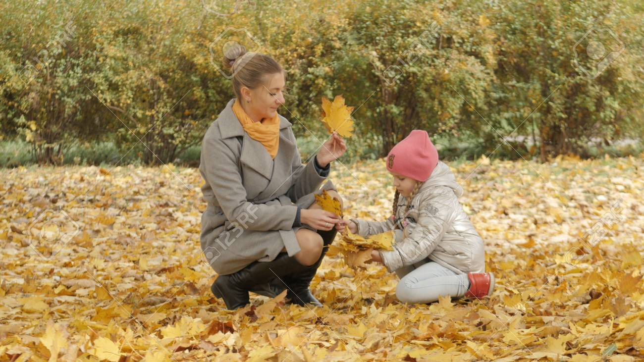 Mom and baby collect yellow leaves in the park. mom kisses her daughter - 91087059
